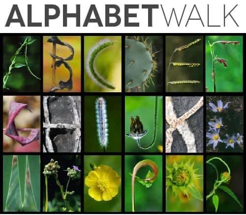 an alphabet Walking challenge