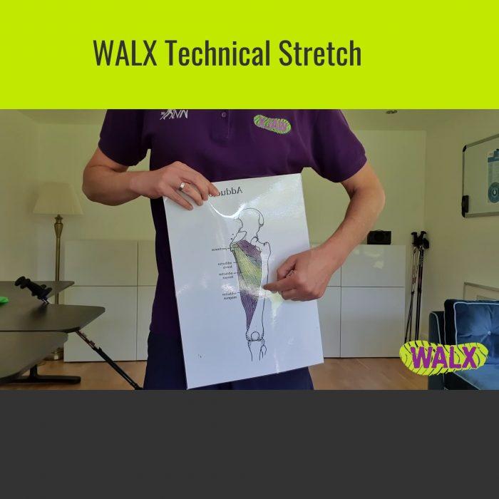 Virtual WALX went live