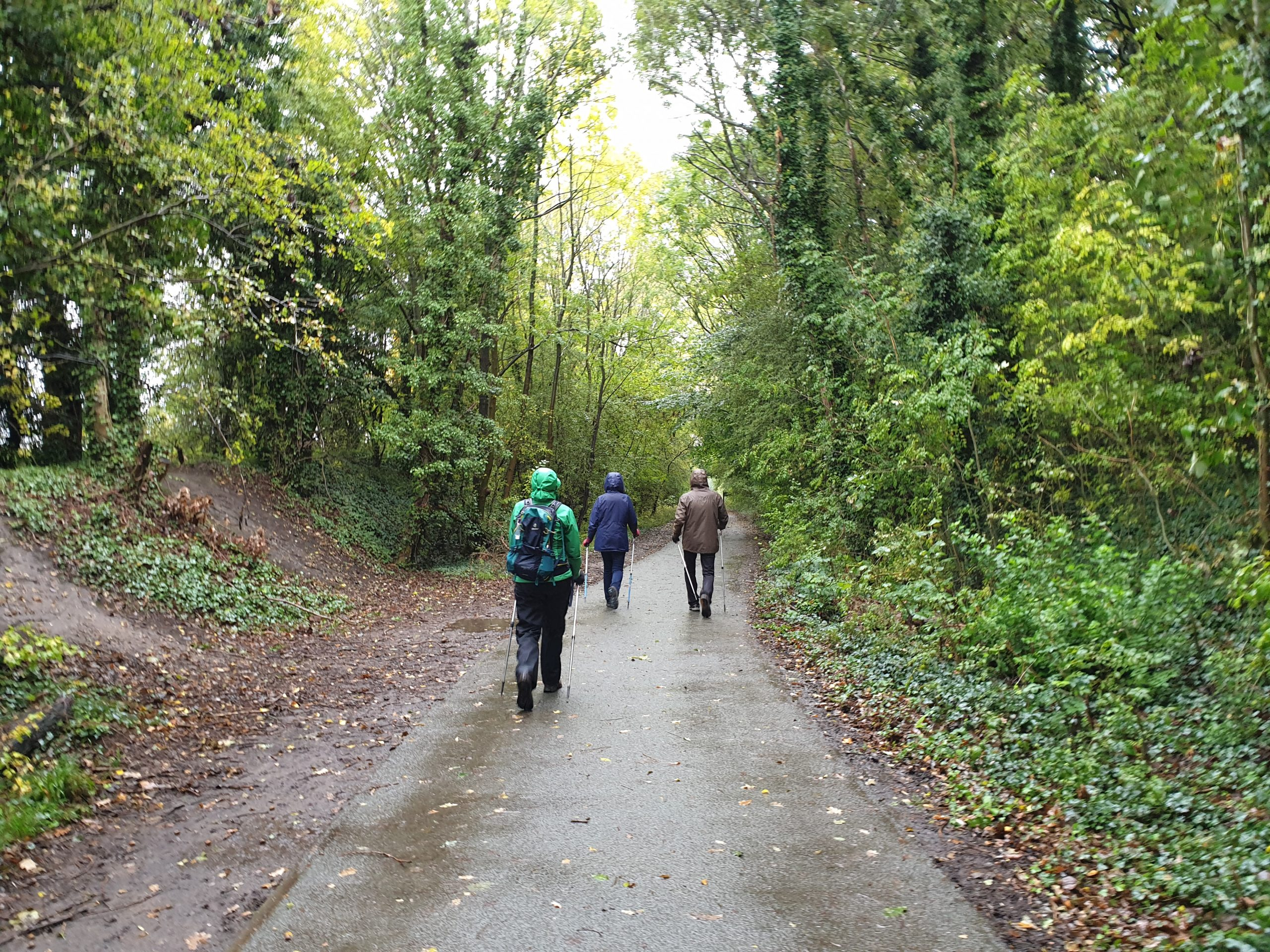 Learning to Nordic Walk