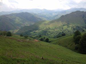 Camino Orisson
